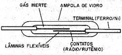 Estrutura de um reed switch.